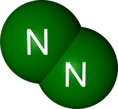 nitrogen information