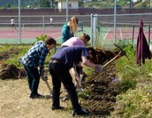 Redwood High School Wants Volunteers