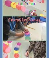 Caterpillar Names