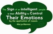 My Social/ Emotional Intelligence