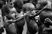 The Scale of Hunger As a World Problem