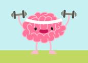 CK-12 Brain Flex
