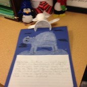 Look at our polar bear research!