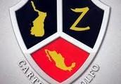Los Zetas,Surenos