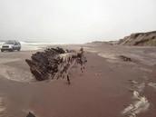Shipreck Washes Ashore