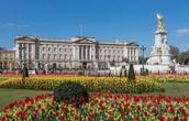 Buckingham palace England