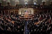 Qualifications of Congressman and Job Expectations