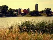 Minnesotas  magnificent farmland!