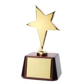 NCSTA Awards