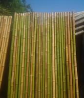 panel de caña natural verde