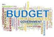 Budget Analysts
