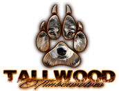 Connect with Tallwood ES