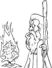 מינוי משה למנהיג
