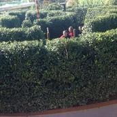 Fourth Grade Arboretum Field Trip