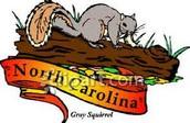 The North Carolina state animal