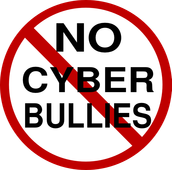 Rule #5 Cyberbully