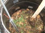 A Compost Bin In Flesh
