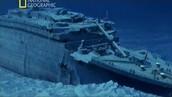 Ship today