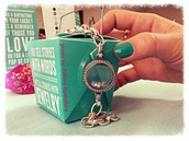 Link Locket bracelet and our take out box