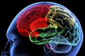 """Memory Techniques for Learning from """"Mind Tools"""""""