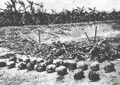 Mass Graves (Chuknagar)