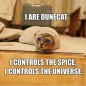 I am DuneCat