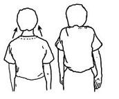 Shoulders Shrug