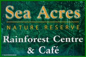 Why Sould Should Visit Sea Acers