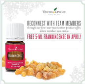 FREE 5ml of Frank for Re-activating your account this month!