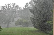 Precipitation