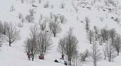 שלג בהרים!