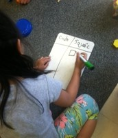 Sorting and classifying shapes