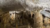 Cave in postojna