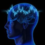 Epileptic Brain Waves
