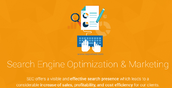 Why should businesses opt for Search Engine Optimization Marketing?