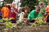 Community Garden Building & Campus Clean-up