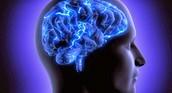 Cerebro y deporte