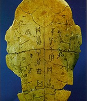 used oracle bones