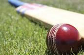 Favorite sport: Cricket