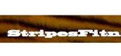 StripesFitness