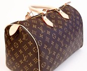Louis Vuitton styles