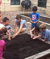 Enhancing Our Garden