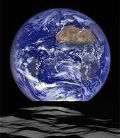 View from lunar lander
