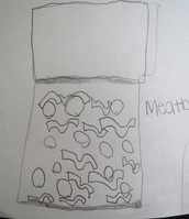"""""""Spahgetti and meatballs"""" by Lilly Grace"""
