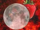 FULL STRAWBERRY MOON HIKE – Mon. June 20, 8 pm