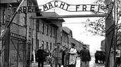 Auschwitz and what happened in each of them.