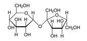 1 disaccharide