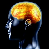 The Emotional Brain is 24 times more powerful than your Rational Brain!