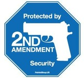 amendment II: the right to bare arms.