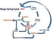 The Cycle of Binge-Eating